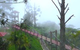 Thumbnail: Essential Guide to Bukit Larut (Maxwell Hill)